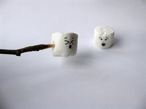 Marshmallows key to life success