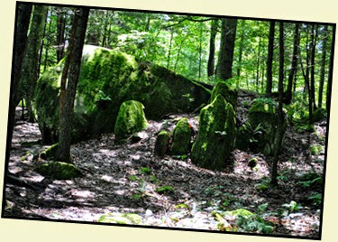 17g - down Rock Garden Trail - We found a Rock Garden