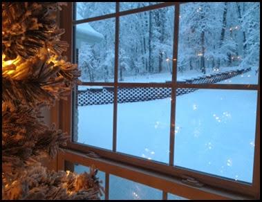 snowy morning 6