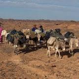 L'Algérie dans la zone la plus exposée au changement climatique