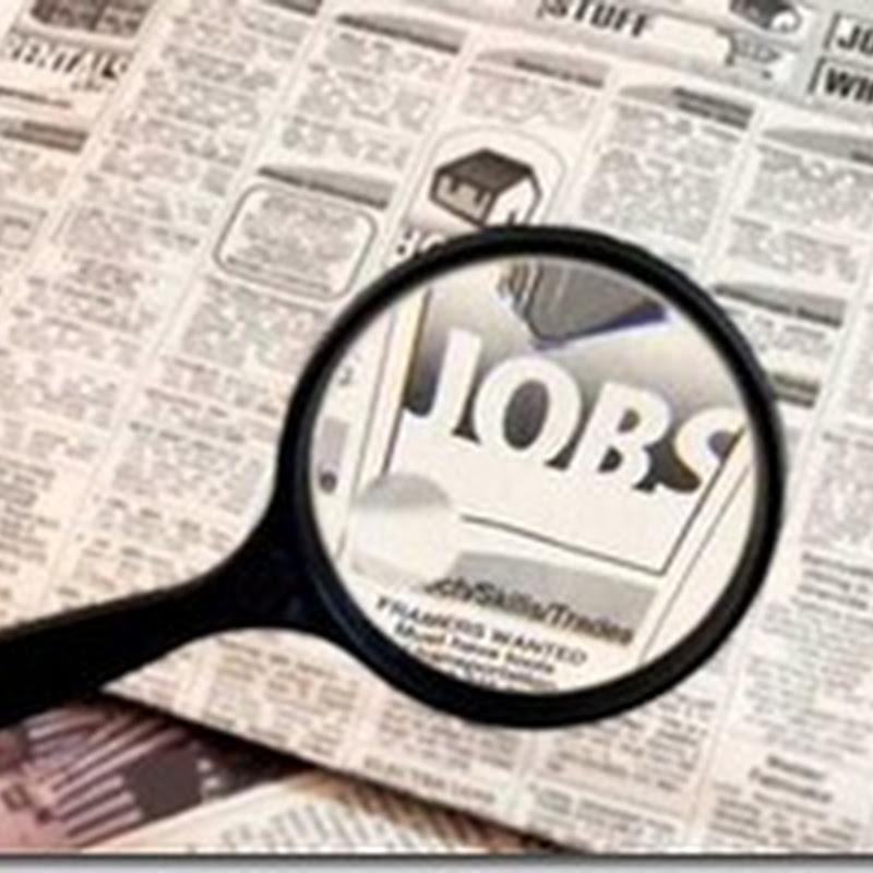Cerita mahasiswa cari kerjaan