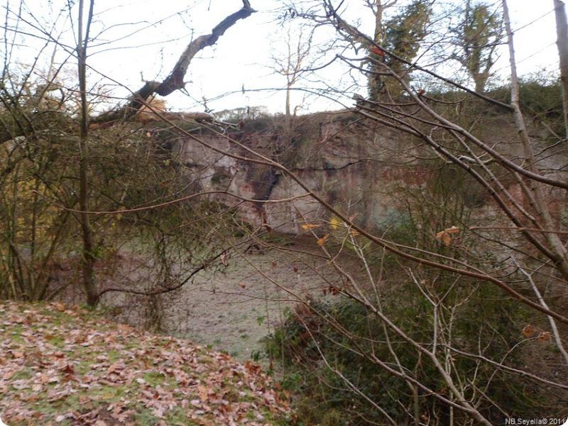 SAM_0001 Gnosall Quarry