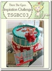 TSGBC03 Inspiration Challenge