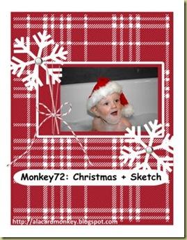 Monkey 72 Christmas-001