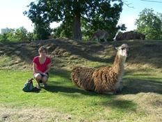 2013.08.04-044 Stéphanie et un guanaco