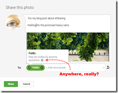 Example of the google+ share dialogue