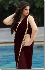 zarine_khan_new_beautiful_stills