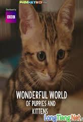 Thế Giới Diệu Kì Của Chó Và Mèo