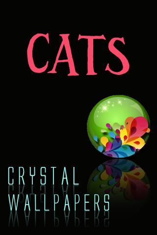 水晶貓壁紙