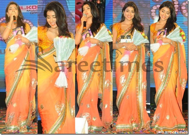 Shriya_Dual_Color_Georgette_Saree