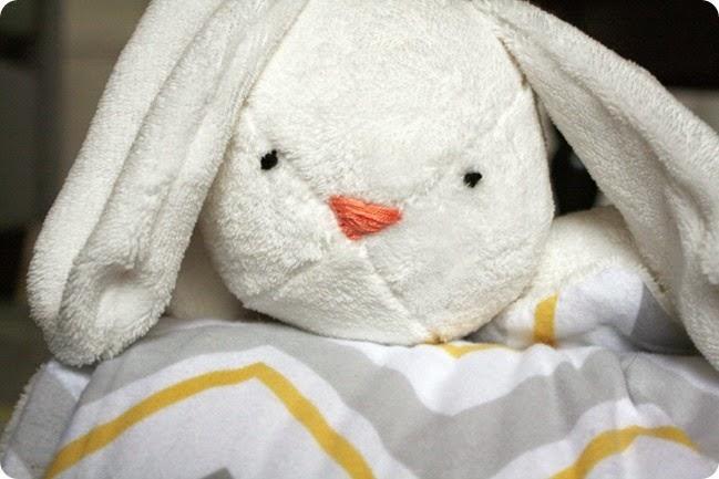 IMG_6728_2561bunny blanket