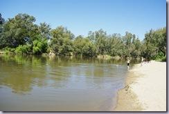 Murrumbidgee River at Wagga Wagga, NSW