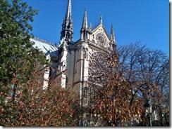 guglie Notre Dame