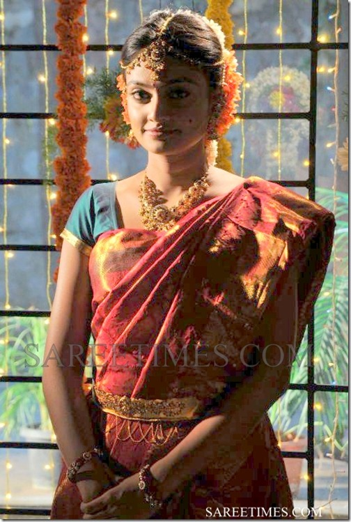 Nikitha_Narayan_Traditional_Saree (1)