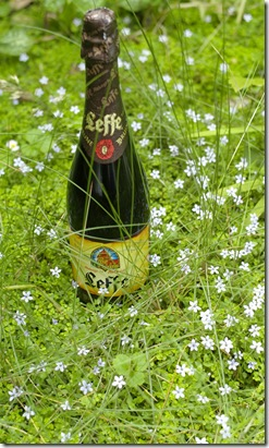 Leffe bottle in fairyland