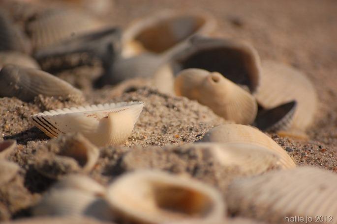Beach75