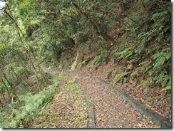 1000610 綠野遊俠將行走的美麗山徑步道
