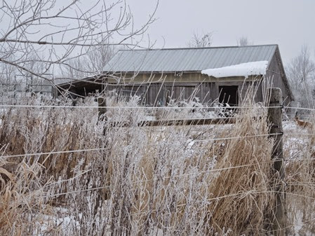 20141221_094314-property-frost