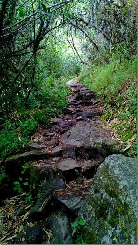 Machu_Picchu_WP_20130706_016