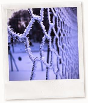 frozenfance