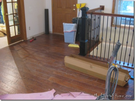 Metal stair rails, hard wood floor