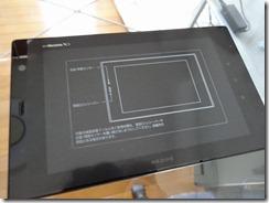 s-DSC00351