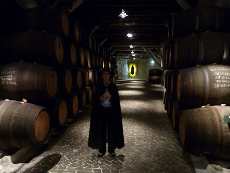 Things to do in Porto: Sandeman winery tour