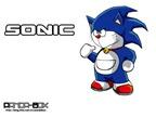 doraemon-cosplay-39-sonic