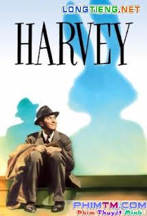 Chú Thỏ Harvey - Harvey