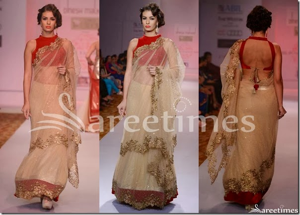 Dinesh_Malkini_Cream_Embroidery_Net_Saree