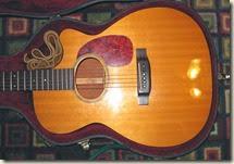 Guitars 016