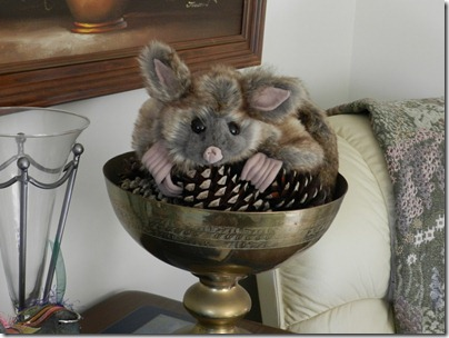 Daphne's Opossum_1