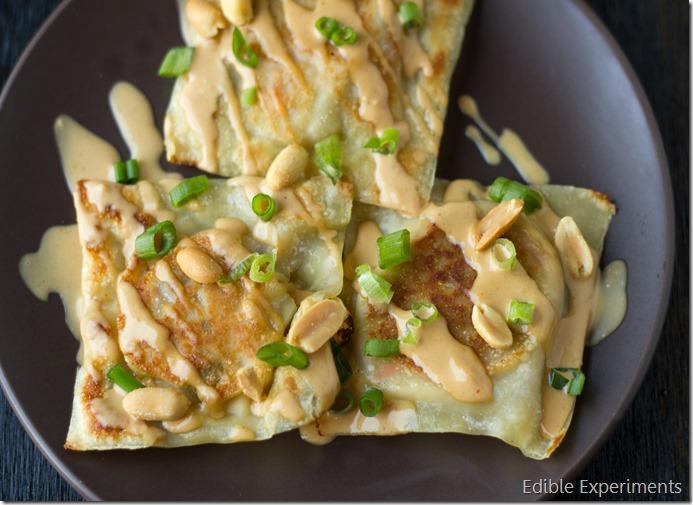 Thai Inspired Raviolis with Cauliflower Veggie Fililng and Creamy Peanut Sauce (13 of 13)