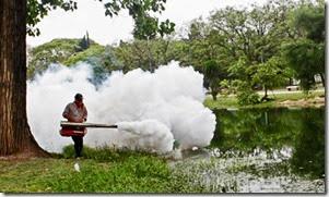 La primera etapa fue colocar larvicidas y esta semana comenzarán las fumigaciones en sectores de riesgo