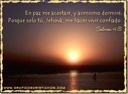 Salm4-ETL-0601
