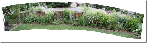 110628_frontyard_inside_fence_pano