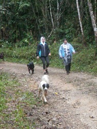 Dogs Trekking 4 (242)