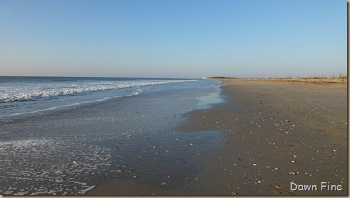 sunrise walk edisto_063