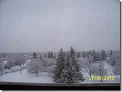 Wintry Day 001