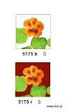 Gobeliny w nowoczesne wzory kwiatowe