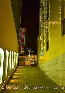 Glória Ishizaka - Luzes de Natal 2013 - Porto  7 cardosas