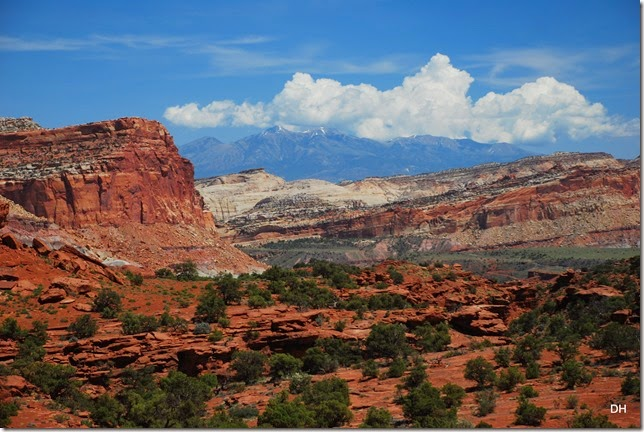 05-26-14 A West Side of Capital Reef NP (67)