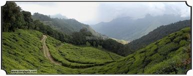 MNR_302_www.keralapix.com_DSC0302