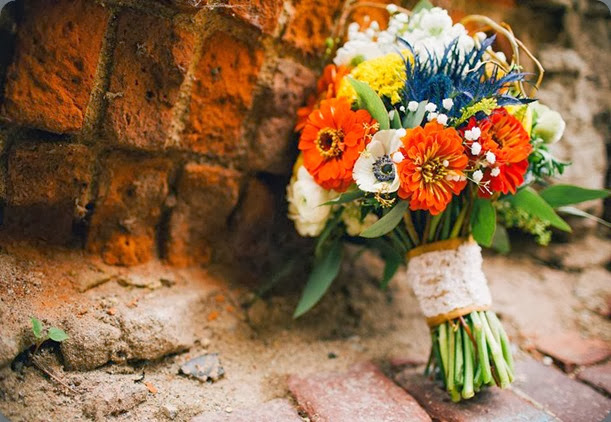 zinnia 1185598_724079440951749_1556151759_n la petote fleur