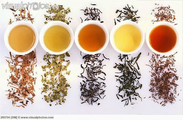 Types Of Green Tea All About Green Tea