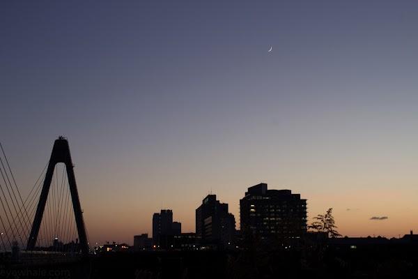 20121116-IMG_2604.jpg