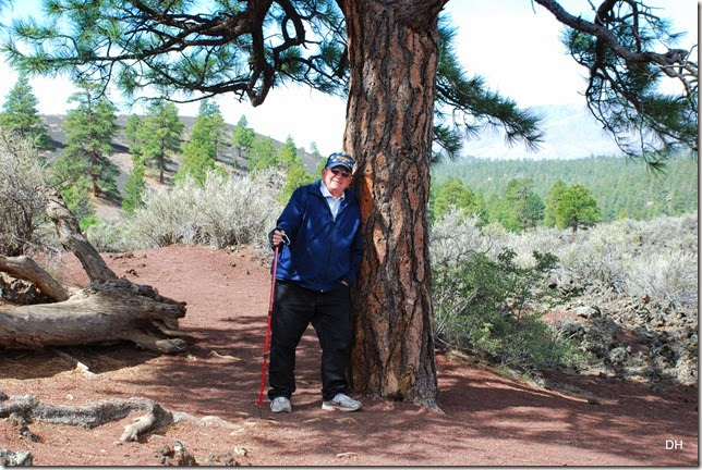 05-06-14 C Sunset Crater NM (68)