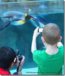 Ready for your close-up.  Two visitors to the Calgary Zoo new Penguin Plunge snapping photos.