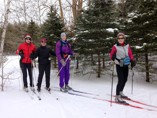 Members of the Northwest Nordic Ski club (Chicago) blazing trail on Lucky's Loype through the skinny field