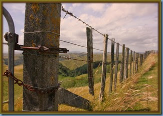 Barbed wire and battens